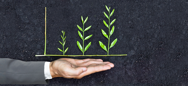 picture of a hand full of growing plants, representing insper's sustainability actions